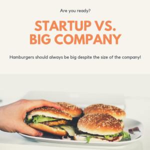 startup_vs_big_company